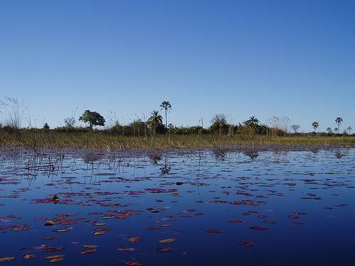Botswana is a country to relax in and to have adventure!!