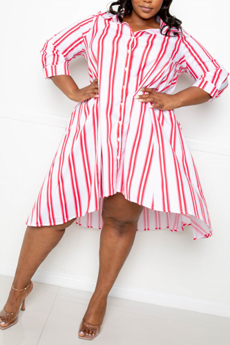 Look at affordable trendy plus size dresses