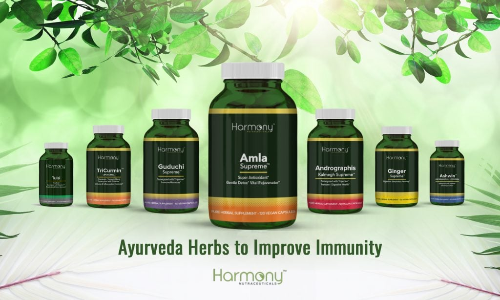 Ayurvedic Supplements for Immune Support