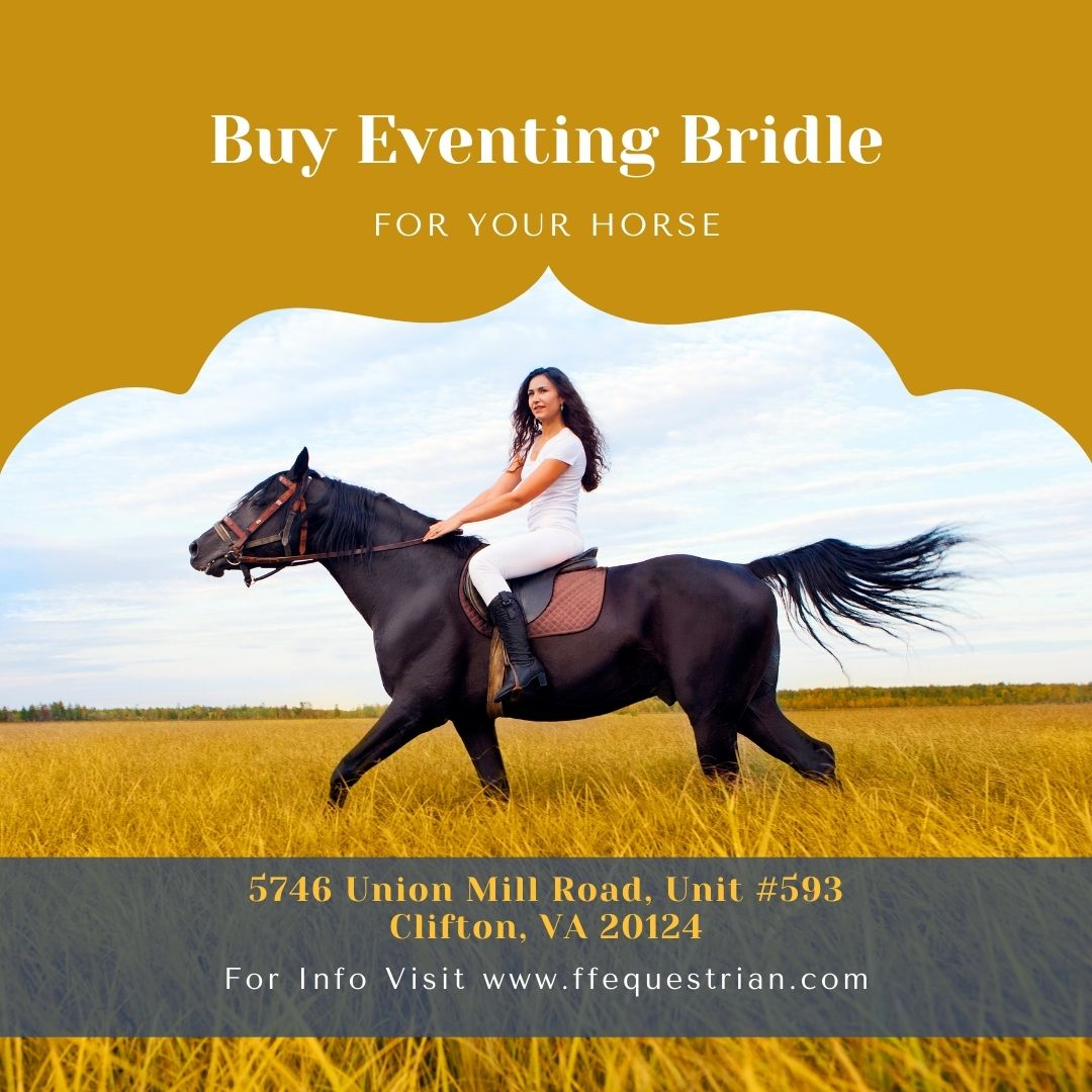 Book Your Eventing Bridle With in Easily Price Values
