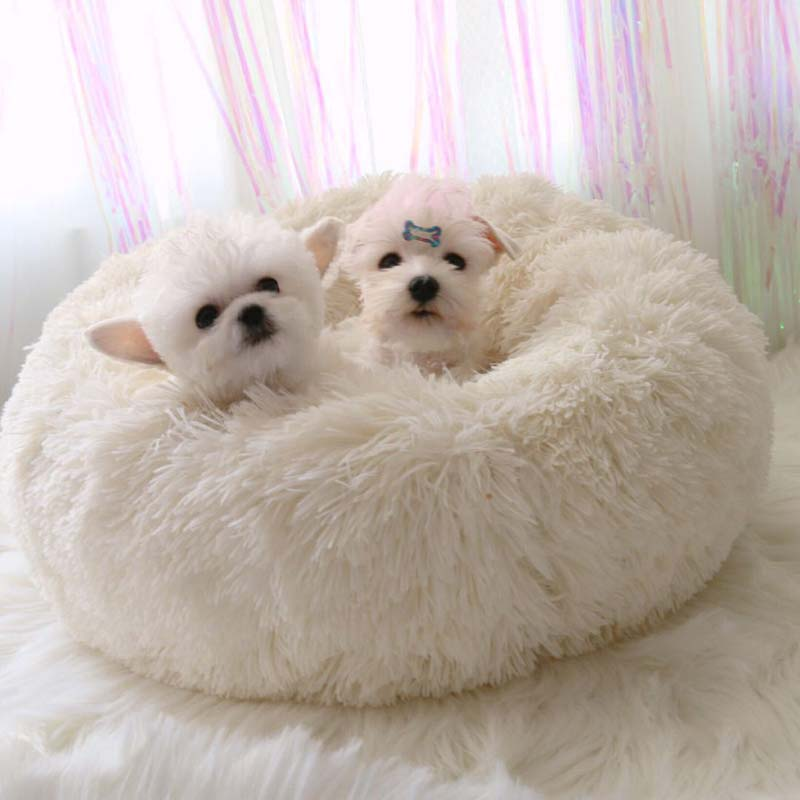 Buy Comfortable Pet Bed With Best Price
