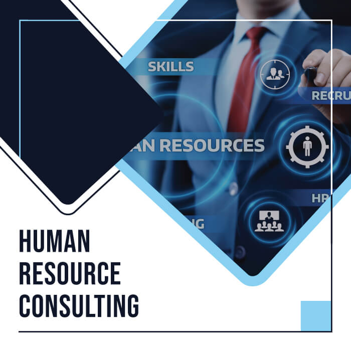 Human Resource Consulting BaseLinked