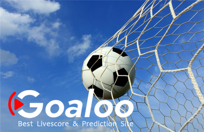 Goaloo gives you more than soccer.