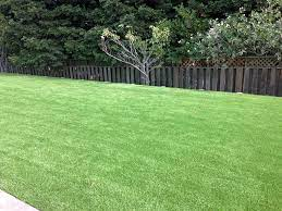 Synthetic turf replacement Northwest