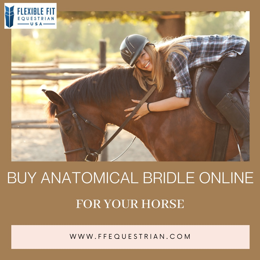 Get Best Anatomical Bridle Quality Products In Clifton Online