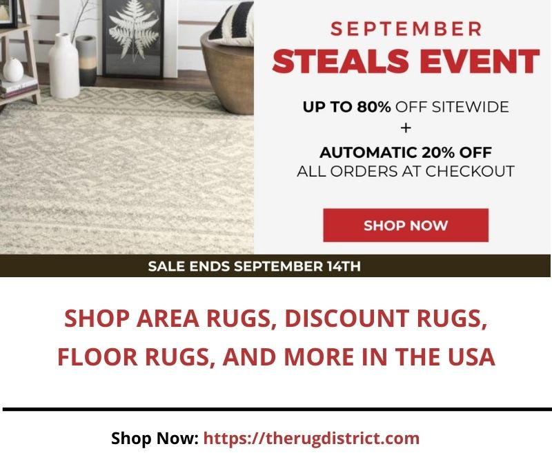 Shop Area Rugs, Discount Rugs, Floor Rugs, and More