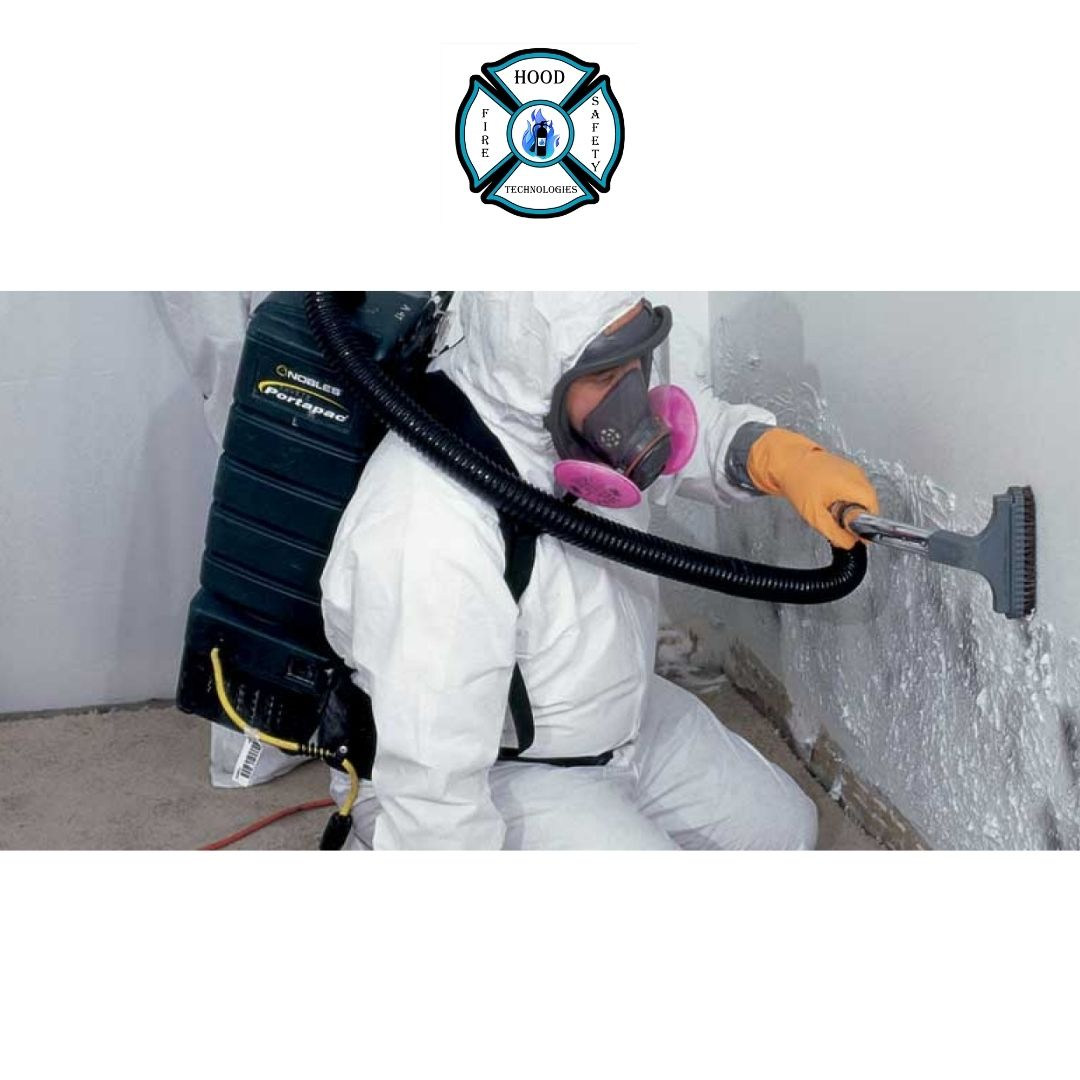 Commercial Residential Mold Removal Services Available At Hood Technologie...