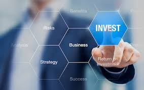 I am ready to invest in any profitable business