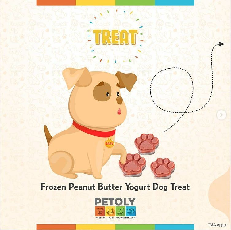 Buy the Best Selling Veg and NonVeg Treats for your Dog PETOLY.in