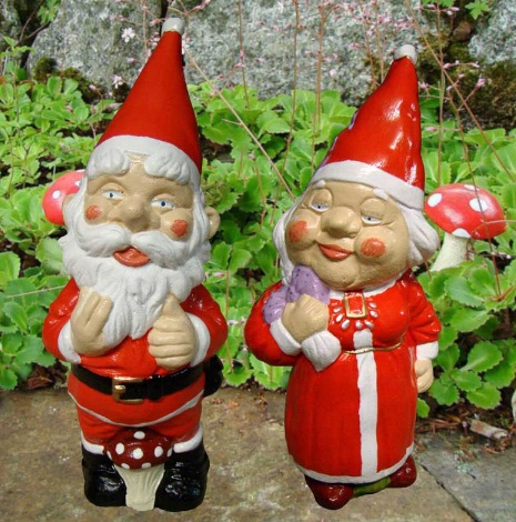 Decorate Your Garden with Traditional Garden Gnomes Buy Online from Pixiel...