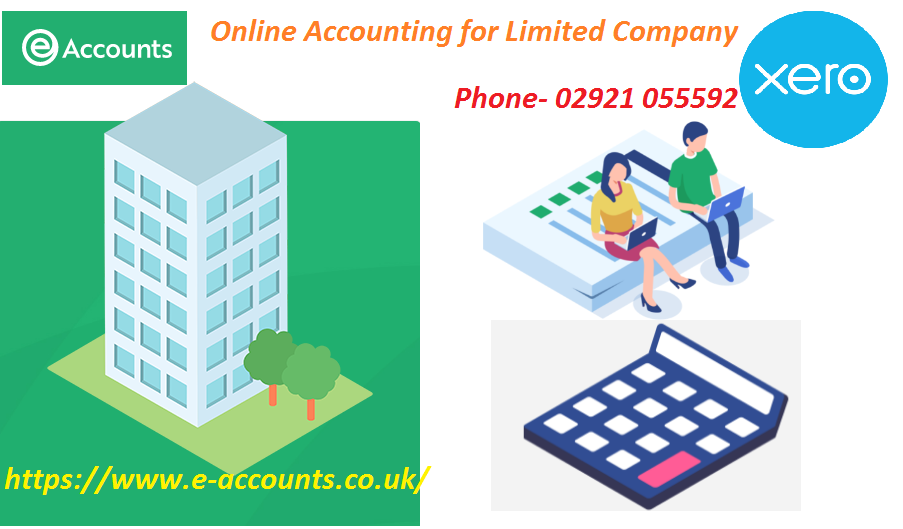 Sole Trader Online Accounting Eaccounts UK