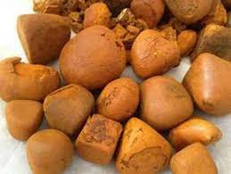 Buy Cow Ox Gallstone available On Stock Now