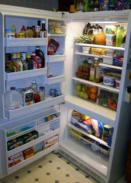 Contact 8103602876 for Professional Refrigerator Repair in Orion Township