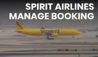 Spirit Airlines Reservations booking tipsUSANevada