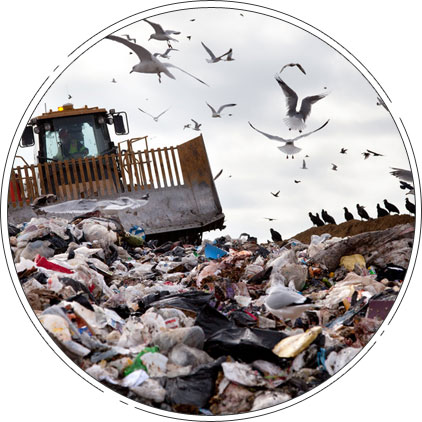 Get the Best Biodegradable Plastic Disposal Services in BC
