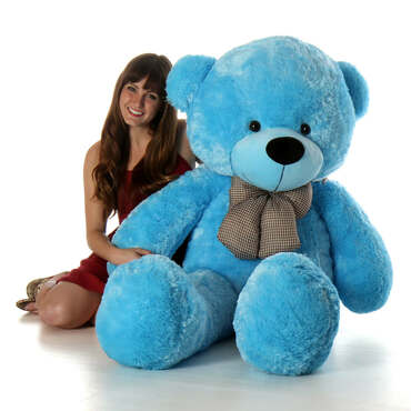 Make Everyday Cool with Cool Teddy Bears