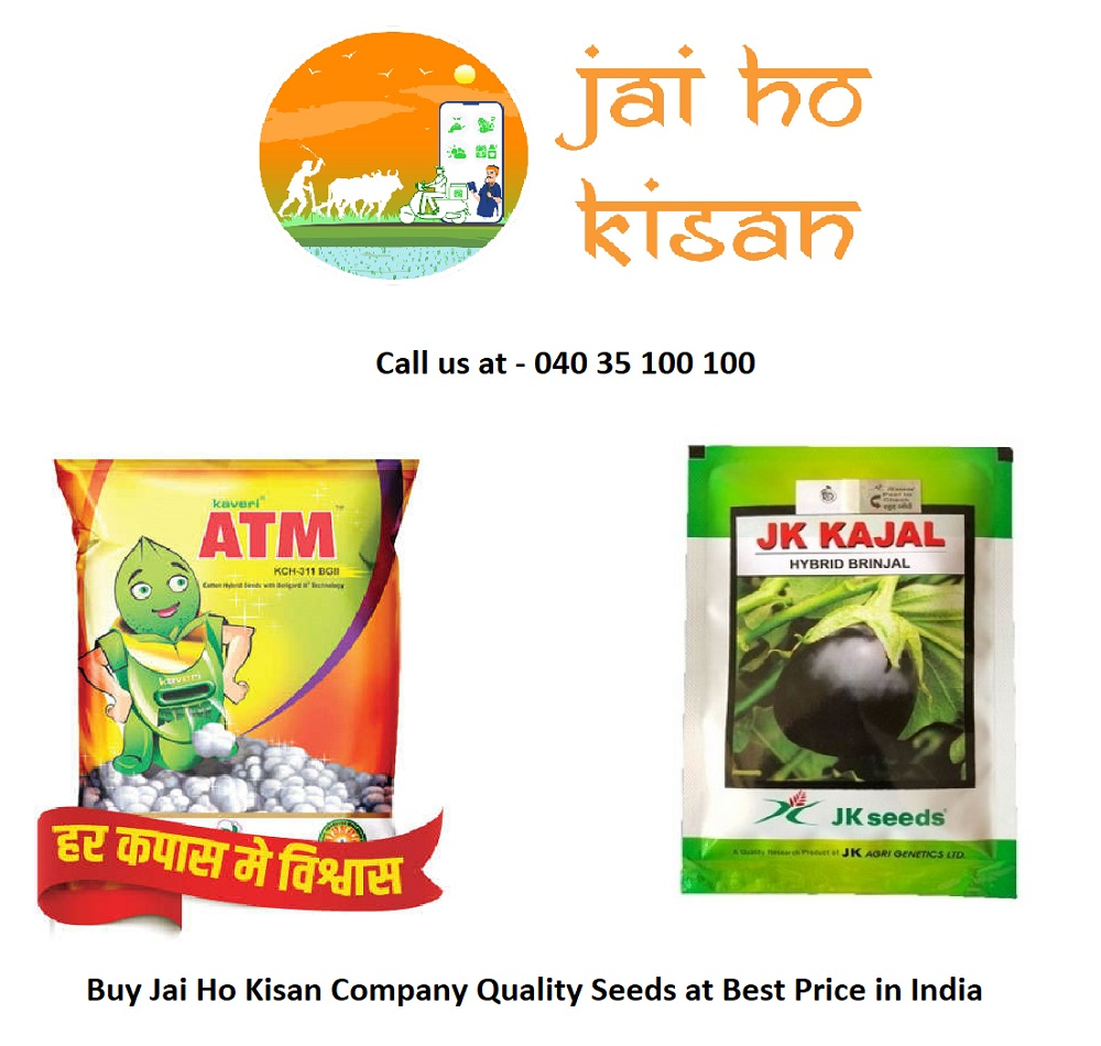 Buy Jai Ho Kisan Company Quality Seeds at Best Price in India