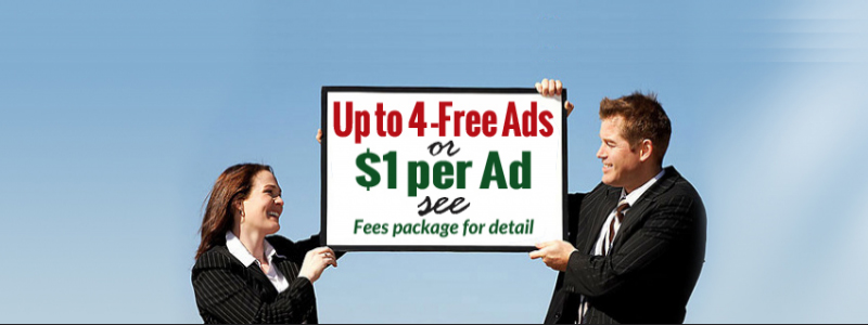 DealHiFi One stop Marketplace for best deals(free advertising sites)
