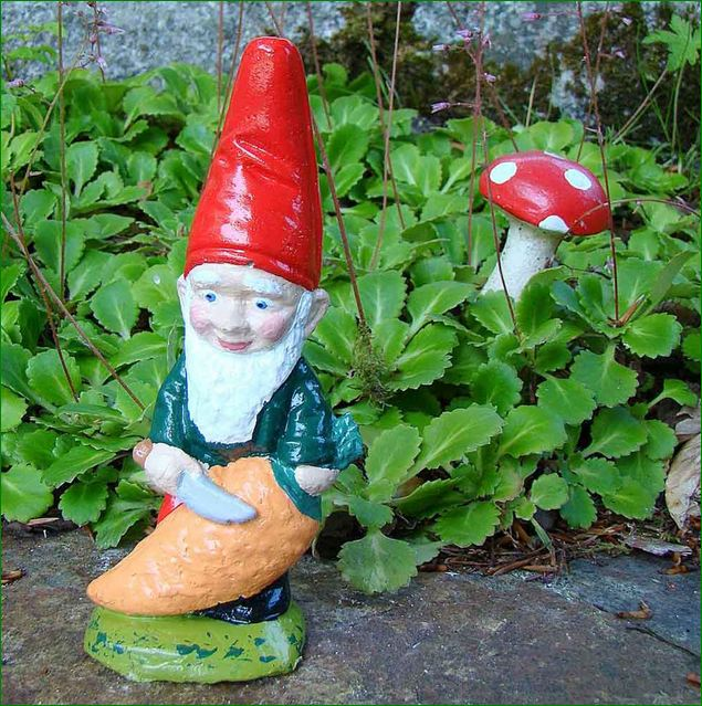 Decorate Your Garden with Pixielands Small Garden Gnomes Buy Online