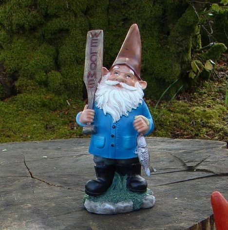 Decorate Your Garden with Traditional Garden Gnome Buy Online from Pixiela...