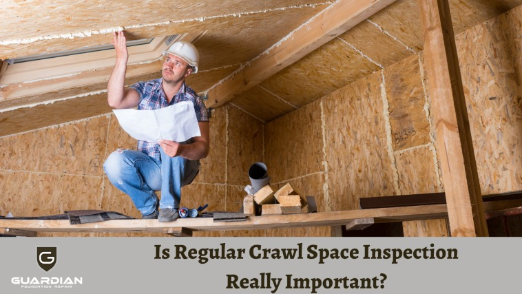 Is Regular Crawl Space Inspection Really Important?