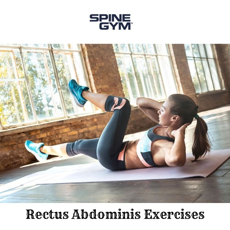 Rectus Abdominis Exercises Burn Your Belly Fat Faster! SpineGym