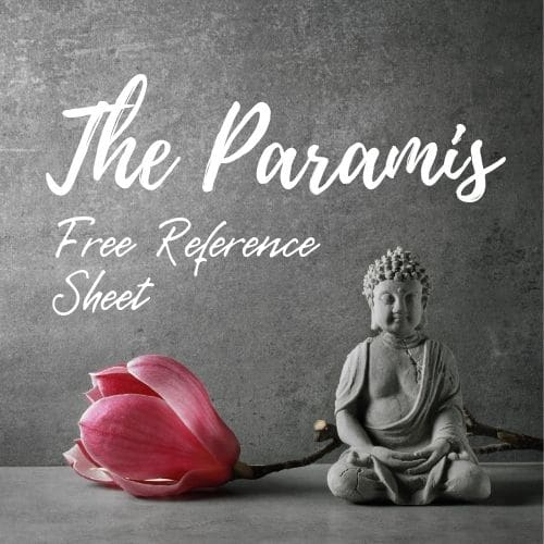 The Paramis Assets Beyond Measure