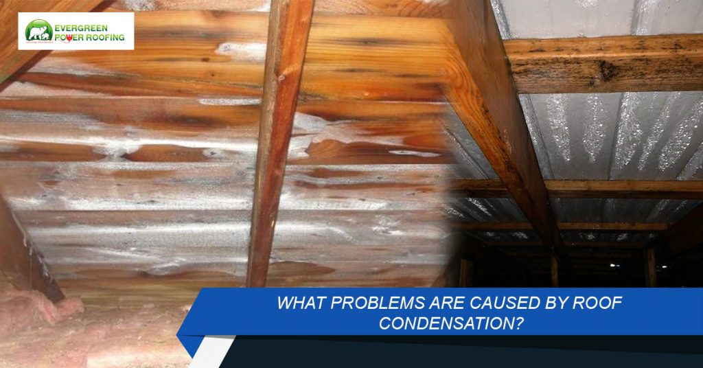 Want to Solve Condensation in Roof Space in UK?